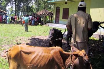 Community Livestock Development Project (CLDP)